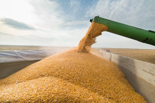 The ABCDs and M&A: Putting 90% of the global food supply in fewer hands
