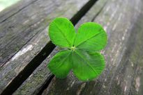 Getting Lucky: The Irish PE and VC Scene