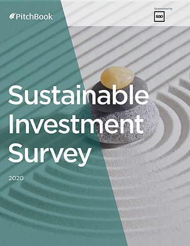 Sustainable Investment Survey