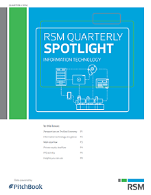 RSM US & PitchBook Spotlight on Information Technology