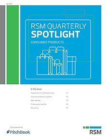RSM US & PitchBook Spotlight on B2C