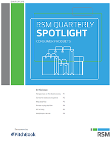 RSM US & PitchBook Spotlight on B2C