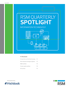 RSM US & PitchBook Spotlight on IT